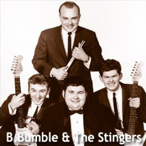 Image for 'B Bumble & The Stingers'