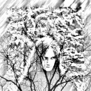 Image for 'Dies Nefastus'