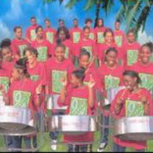 Image for 'Lambeth Community Youth Steel Orchestra'