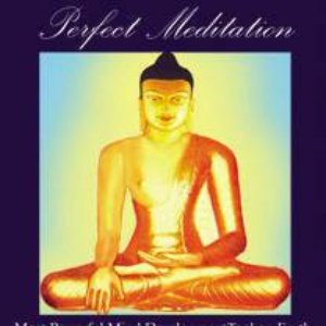 Image for 'Perfect Meditation'