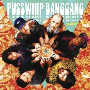 Image for 'Pusswhip Banggang'