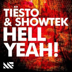 Image for 'Tiesto & Showtek'