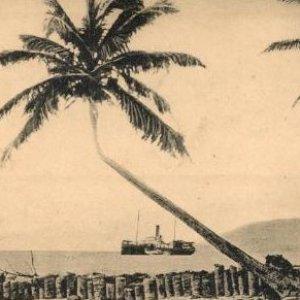 Imagem de 'Tropical Tobacco'