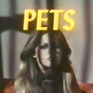 Image for 'ACTRESS PETS'