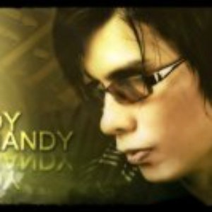Image for 'Boy Shandy'
