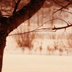 Image pour 'Five Elements Music'