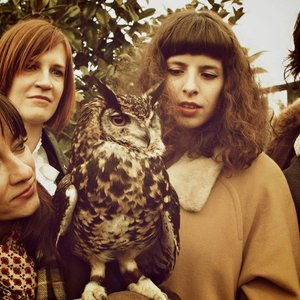 Image for 'Scowlin Owl'