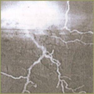 Image for 'Acid Eagle'