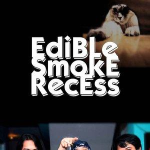Image for 'Edible Smoke Recess'