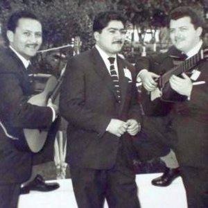 Image for 'Los Troveros Criollos'
