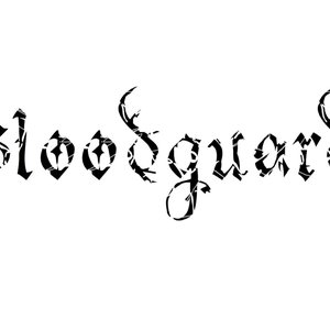 Image for 'Bloodguard'