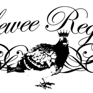 Image for 'lewee regal'