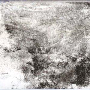 Image for 'Lion Limb'