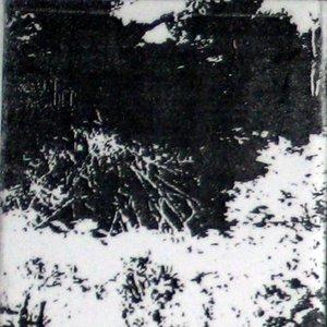 Image for 'ABU'
