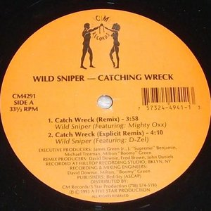 Image for 'wild sniper'