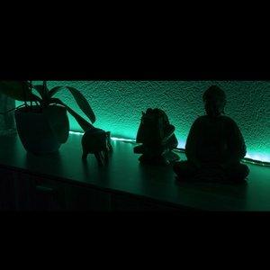 Immagine per 'Friends Of LED'