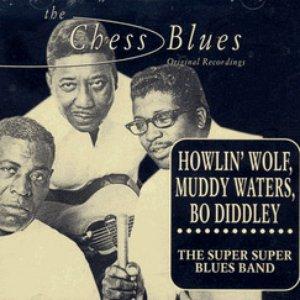 Bild für 'Muddy Waters, Little Walter & Bo Diddley'