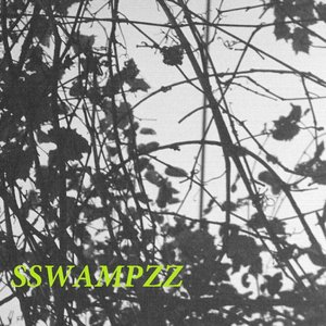 Image for 'SSWAMPZZ'