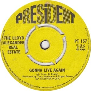Image for 'The Lloyd Alexander Real Estate'