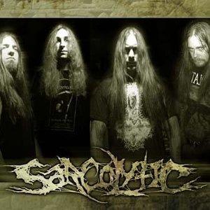 Bild für 'Sarcolytic'