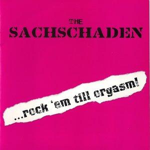 Image for 'The Sachschaden'