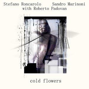 Image for 'Sandro Marinoni & Stefano Roncarolo with Roberto Padovan'