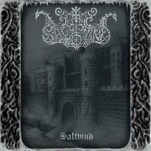 Image for 'Saltvind'