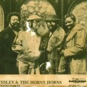 Image for 'Horny Horns'
