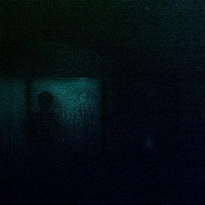 Bild für 'Duvet'