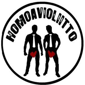 Image for 'Homoavioliitto'