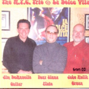 Image for 'The NYC Trio'
