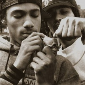 Bild för 'Bone Brothers'