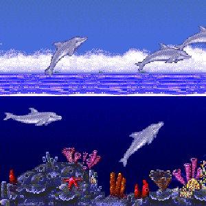 Bild för 'Fire Coral'