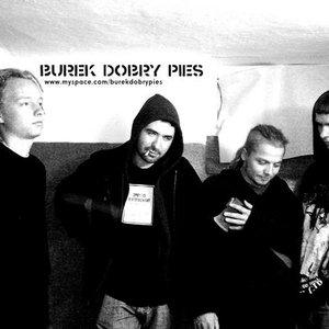 Bild för 'Burek dobry pies'