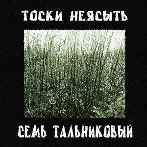 Image for 'Тоски Неясыть'
