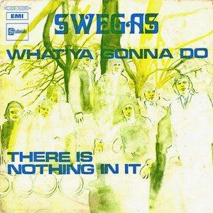 Image for 'Swegas'