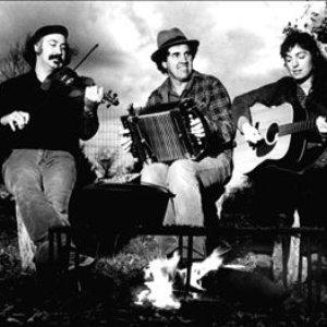 Image for 'Savoy-Doucet Cajun Band'