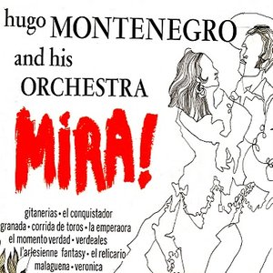 Image for 'Hugo Montenegro and His Orchestra'