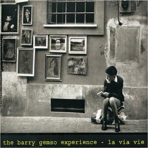 Image for 'The Barry Gemso Experience'