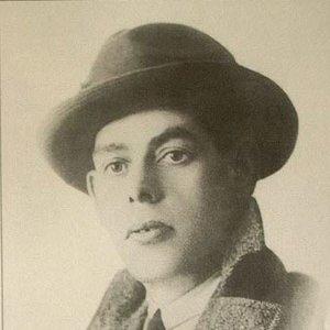 Image for 'Alfredo Marceneiro'