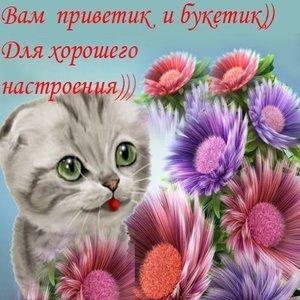 Image for 'Моепони'