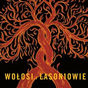 Image for 'Wołosi i Lasoniowie'