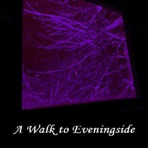 Image pour 'A Walk To Eveningside'