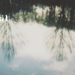 Image for 'Lichen'