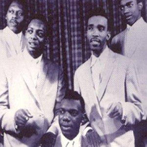Bild für 'The Five Du-Tones'
