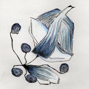 Image for 'Sala-Arhimo'