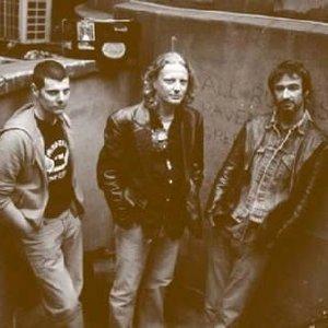 Image for 'The Matt Schofield Trio'