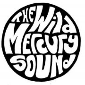 Image for 'The Wild Mercury Sound'