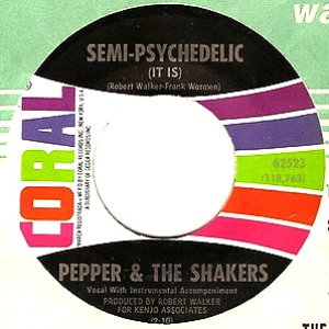 Image for 'Pepper & the Shakers'