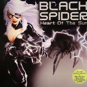 Image for 'Black Spider'